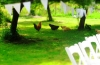 chickens-and-flags-megan-adam-wedding-2014-024-152dde074ae41cbb577055a43b2cec745ce6bbe3